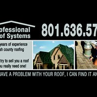 Professional Roof systems