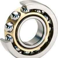 IDP Bearings