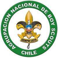 Agrupación Nacional de Boy Scouts de Chile