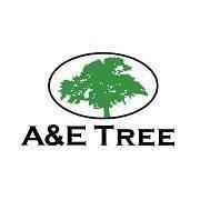 A&E Tree Service