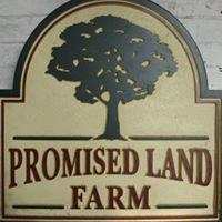 Promised Land Farm