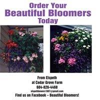 Beautiful Bloomers