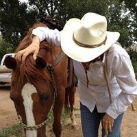 Dr. Ellen Neal, D.C. American Veterinary Chiropractic Association certified