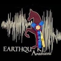 Earthquake Arabians LLC
