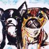 Alberta Bulldog Rescue Society