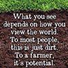 Anthony Petitti Organic Greenhouse