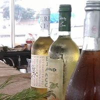 OC Wine Tasting Cruise