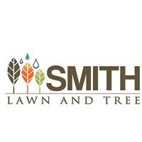 Smith Lawn and Tree