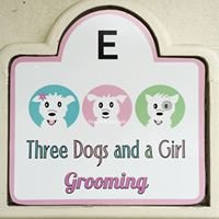 Three Dogs and a Girl Grooming