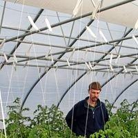 Stone Brothers Farm & Greenhouses
