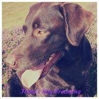 Fiona's Dog Grooming