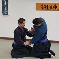 Shindokan Budo -  Classical Japanese Sword & Jujutsu