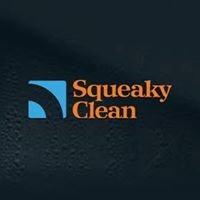 The Squeaky Clean Company
