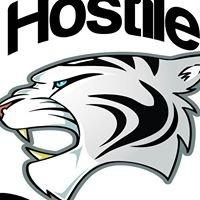 Hostile Gato Robotics #4005