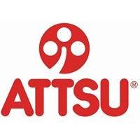 ATTSU Boilers
