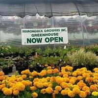 Adirondack Growers