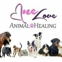 One Love Animal Healing