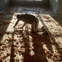 McCaman Hardwood Flooring