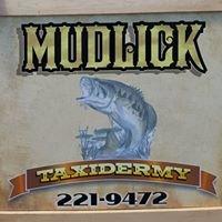 Mudlick Taxidermy