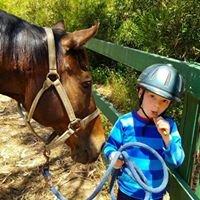 The James S. Brady Therapeutic Riding Program - Brady Therapeutic Riding