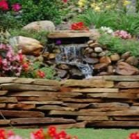 Bass Landscaping Care