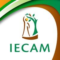 IECAM