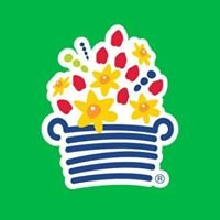 Edible Arrangements - Bellaire/Meyerland