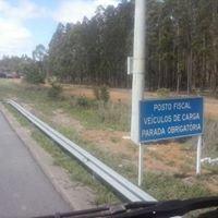 posto Faisão