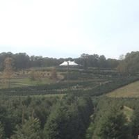 Geer Tree Farm