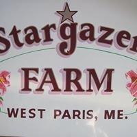 Stargazer Farm Fabrication