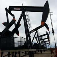 Sentry International Inc. Artificial Lift Systems