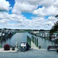 Vines Creek Marina