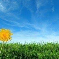 Kwik Kutters Lawn and Landscape Care