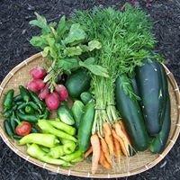 A-List Organics