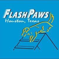 FlashPaws Agility Training Center
