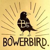 Bowerbird Comboyne