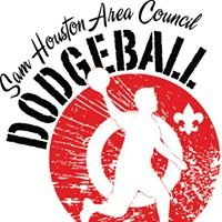 SHAC Corporate Dodgeball Challenge