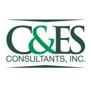 Construction and Engineering Services Consultants, Inc.
