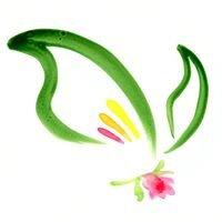 New Canaan Florist Garden & Gifts