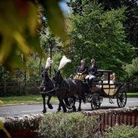 Tartan Carriages