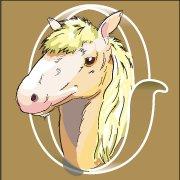 Dog & Pony Design