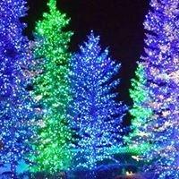 Orion Holiday Lighting