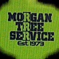 Morgan Tree Service