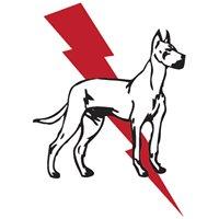 Dane & Associates Electric Company
