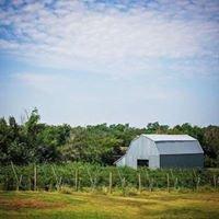Agape House Berry Farm