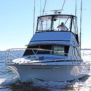 Wild Card Sportfishing Charters, OBX NC