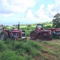 Hester Farm
