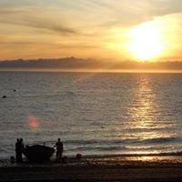 Beachm Fishery, Inc.