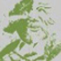 The Green Man Landscape Services