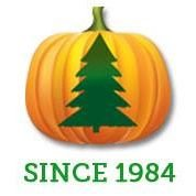 Moore's Pumpkin Patch and Christmas Trees